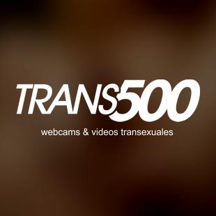 Trans500 Profile Picture